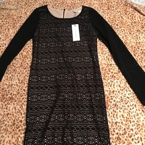 Black and Tan lace long sleeve dress.